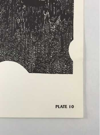 Plate 10 Detail